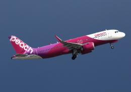 LOTUSさんが、関西国際空港で撮影したピーチ A320-251Nの航空フォト(飛行機 写真・画像)
