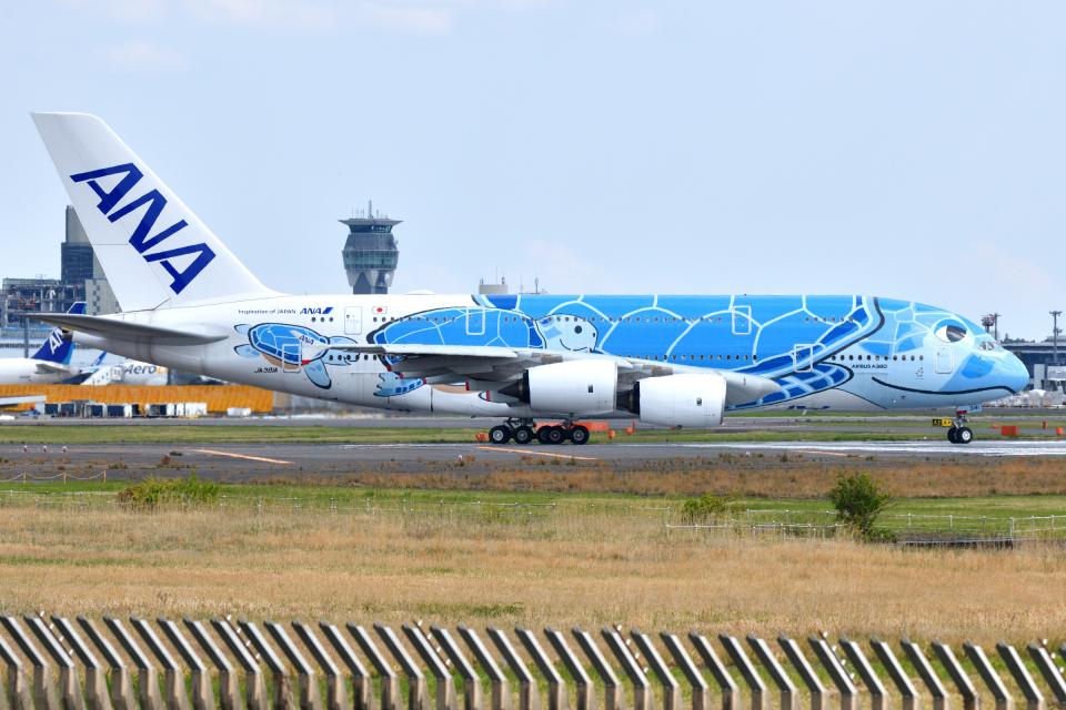 saoya_saodakeさんの全日空 Airbus A380 (JA381A) 航空フォト