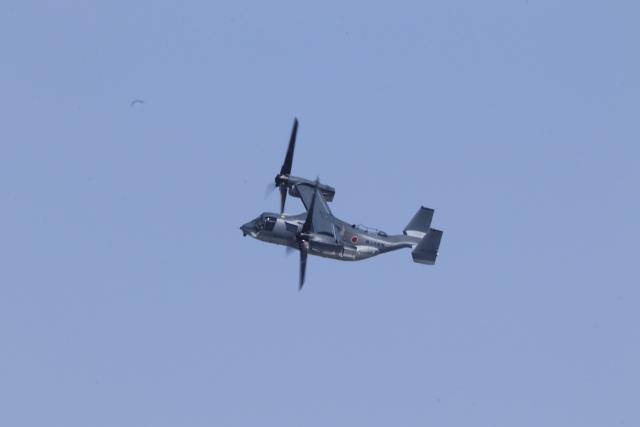 mahiちゃんさんが、木更津飛行場で撮影した陸上自衛隊 MV-22Bの航空フォト(飛行機 写真・画像)