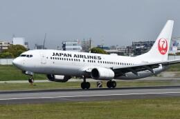 k-spotterさんが、伊丹空港で撮影した日本航空 737-846の航空フォト(飛行機 写真・画像)