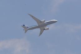 md11jbirdさんが、伊丹空港で撮影した全日空 787-8 Dreamlinerの航空フォト(飛行機 写真・画像)