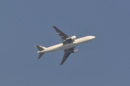 md11jbirdさんが、伊丹空港で撮影した日本航空 777-246/ERの航空フォト(飛行機 写真・画像)