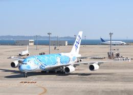 tamtam3839さんが、中部国際空港で撮影した全日空 A380-841の航空フォト(飛行機 写真・画像)