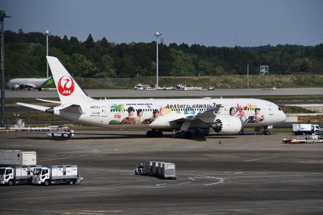 Tarochanさんが、成田国際空港で撮影した日本航空 787-9の航空フォト(飛行機 写真・画像)