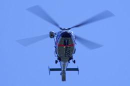apphgさんが、静岡空港で撮影した静岡県警察 AS365N1 Dauphin 2の航空フォト(飛行機 写真・画像)