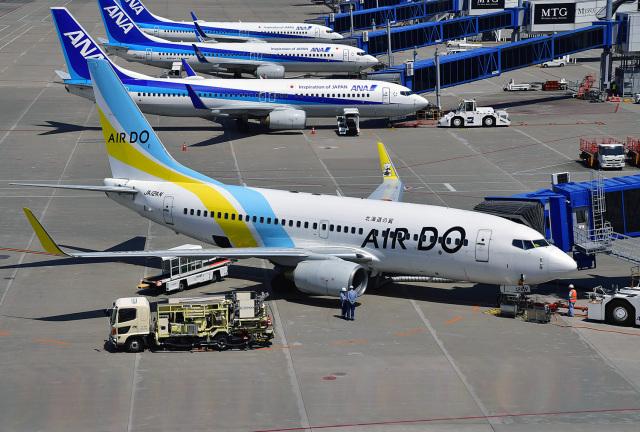 鈴鹿@風さんが、中部国際空港で撮影したAIR DO 737-781の航空フォト(飛行機 写真・画像)