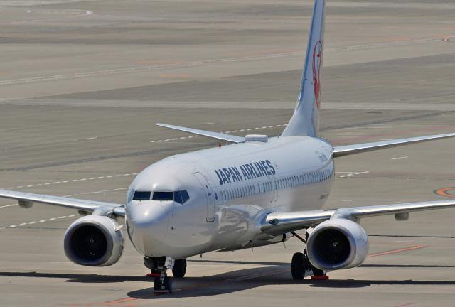 鈴鹿@風さんが、中部国際空港で撮影した日本航空 737-846の航空フォト(飛行機 写真・画像)