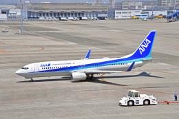 航空フォト:JA73AN 全日空 737-800