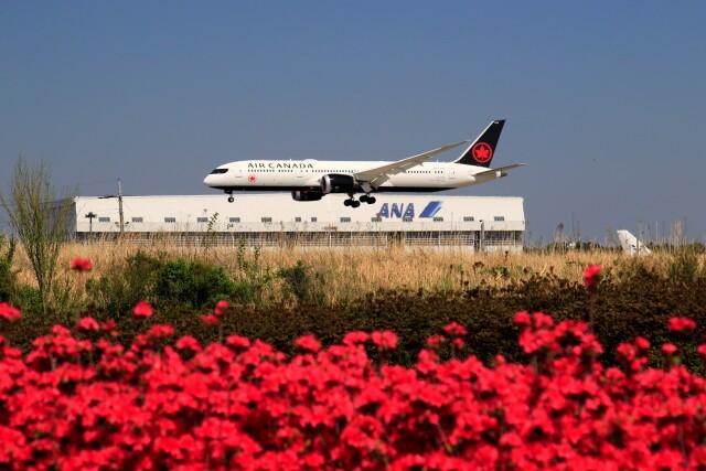 ☆ライダーさんが、成田国際空港で撮影したエア・カナダ 787-9の航空フォト(飛行機 写真・画像)