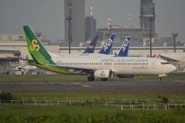 LEGACY-747さんが、成田国際空港で撮影した春秋航空日本 737-86Nの航空フォト(飛行機 写真・画像)