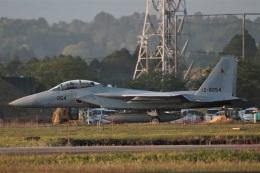 DONKEYさんが、新田原基地で撮影した航空自衛隊 F-15DJ Eagleの航空フォト(飛行機 写真・画像)