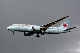 アルビレオさんが、成田国際空港で撮影したエア・カナダ 787-8 Dreamlinerの航空フォト(飛行機 写真・画像)