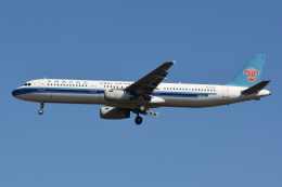Deepさんが、成田国際空港で撮影した中国南方航空 A321-231の航空フォト(飛行機 写真・画像)