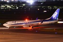 TOPAZ102さんが、伊丹空港で撮影した全日空 737-881の航空フォト(飛行機 写真・画像)