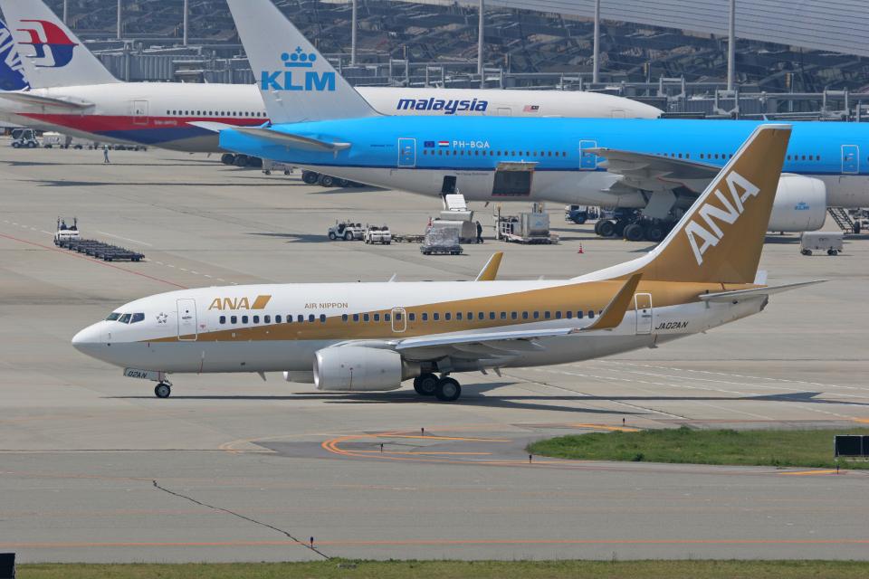 tsubameさんの全日空 Boeing 737-700 (JA02AN) 航空フォト