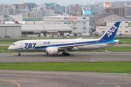 kan787allさんが、福岡空港で撮影した全日空 787-8 Dreamlinerの航空フォト(飛行機 写真・画像)