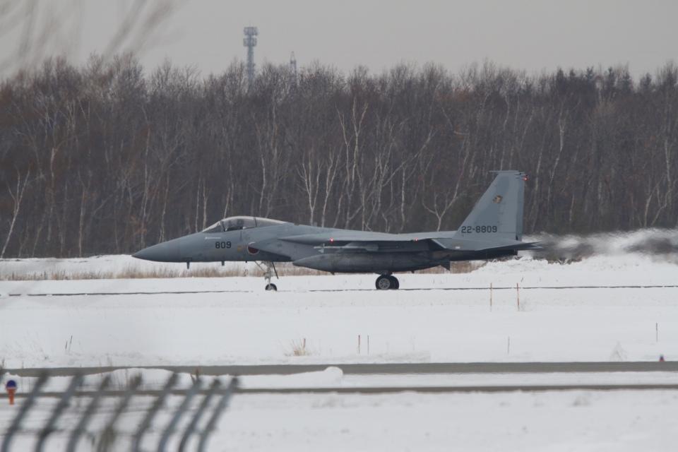 344さんの航空自衛隊 Mitsubishi F-15J Eagle (22-8809) 航空フォト