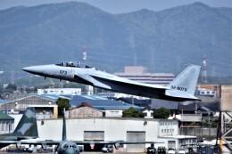 MSN/PFさんが、名古屋飛行場で撮影した航空自衛隊 F-15DJ Eagleの航空フォト(飛行機 写真・画像)