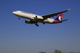 ☆ライダーさんが、成田国際空港で撮影したハワイアン航空 A330-243の航空フォト(飛行機 写真・画像)