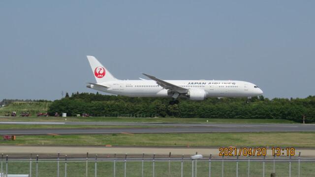 yurtarouさんが、成田国際空港で撮影した日本航空 787-9の航空フォト(飛行機 写真・画像)