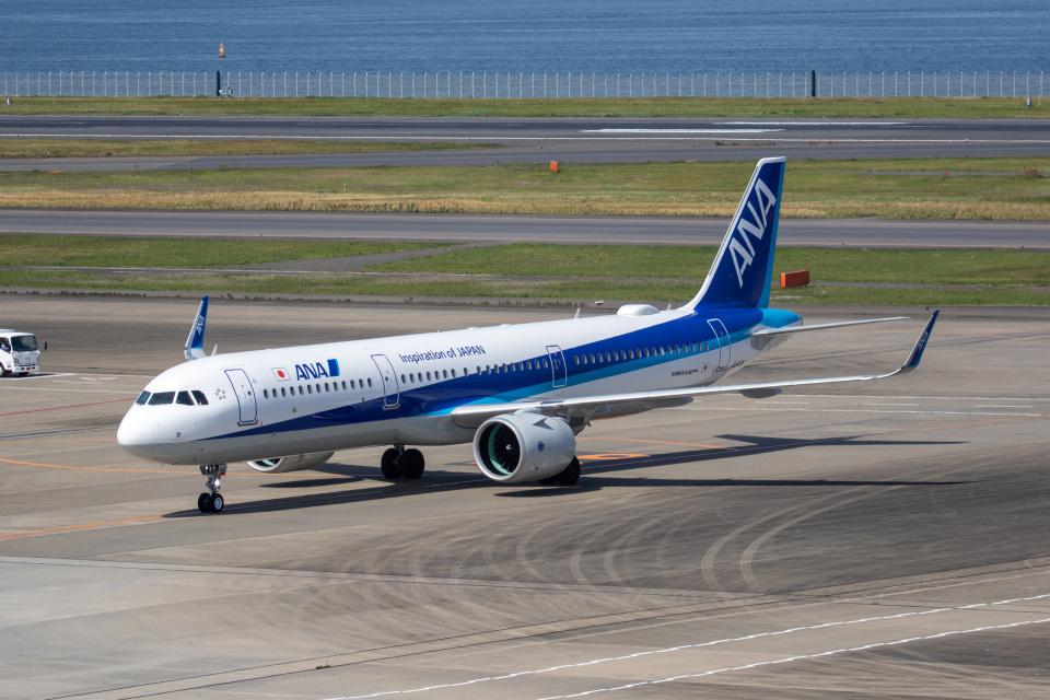 どりーむらいなーさんの全日空 Airbus A321neo (JA143A) 航空フォト