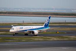どりーむらいなーさんが、羽田空港で撮影した全日空 787-8 Dreamlinerの航空フォト(飛行機 写真・画像)