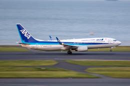 どりーむらいなーさんが、羽田空港で撮影した全日空 737-8ALの航空フォト(飛行機 写真・画像)
