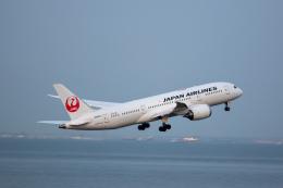 どりーむらいなーさんが、羽田空港で撮影した日本航空 787-8 Dreamlinerの航空フォト(飛行機 写真・画像)