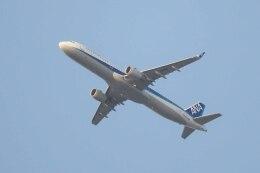 Re4/4さんが、羽田空港で撮影した全日空 A321-211の航空フォト(飛行機 写真・画像)
