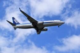こじゆきさんが、那覇空港で撮影した全日空 737-8ALの航空フォト(飛行機 写真・画像)