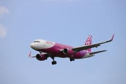 赤ちんさんが、成田国際空港で撮影したピーチ A320-214の航空フォト(飛行機 写真・画像)