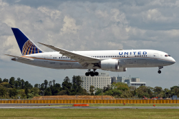 Cozy Gotoさんが、成田国際空港で撮影したユナイテッド航空 787-8 Dreamlinerの航空フォト(飛行機 写真・画像)