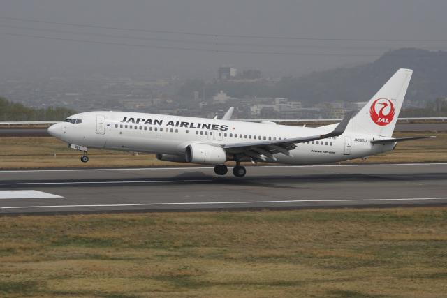 神宮寺ももさんが、高松空港で撮影した日本航空 737-846の航空フォト(飛行機 写真・画像)