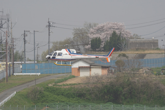 神宮寺ももさんが、高松空港で撮影した四国航空 AS350B3 Ecureuilの航空フォト(飛行機 写真・画像)