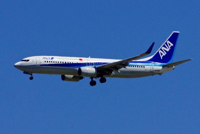 kaeru6006さんが、羽田空港で撮影した全日空 737-881の航空フォト(飛行機 写真・画像)