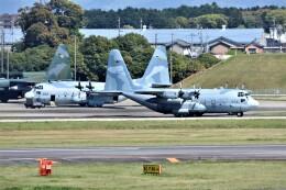 MSN/PFさんが、名古屋飛行場で撮影した航空自衛隊 C-130H Herculesの航空フォト(飛行機 写真・画像)