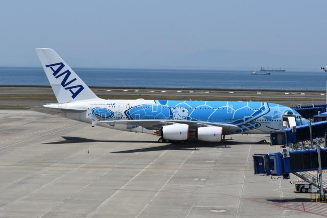 東亜国内航空さんが、中部国際空港で撮影した全日空 A380-841の航空フォト(飛行機 写真・画像)