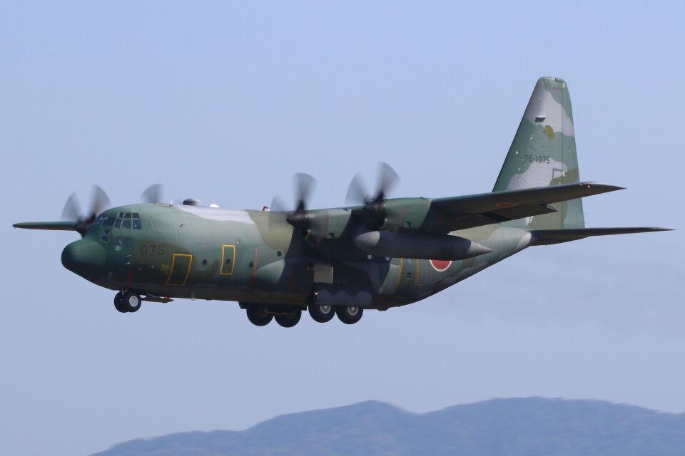 CYGNUS_20-1101さんの航空自衛隊 Lockheed C-130 Hercules (75-1075) 航空フォト