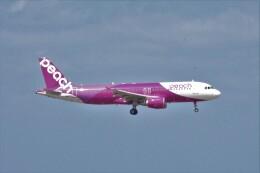 わいどあさんが、那覇空港で撮影したピーチ A320-214の航空フォト(飛行機 写真・画像)