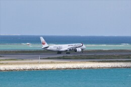 わいどあさんが、那覇空港で撮影した日本航空 A350-941の航空フォト(飛行機 写真・画像)