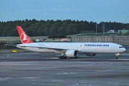 Flying A340さんが、成田国際空港で撮影したターキッシュ・エアラインズ 777-3F2/ERの航空フォト(飛行機 写真・画像)