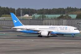 Flying A340さんが、成田国際空港で撮影した厦門航空 787-8 Dreamlinerの航空フォト(飛行機 写真・画像)