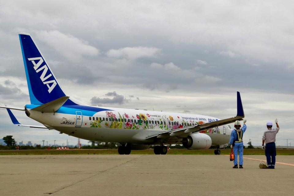 HNANA787さんの全日空 Boeing 737-800 (JA85AN) 航空フォト