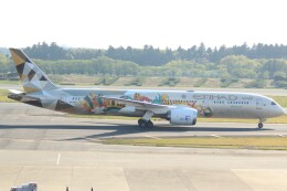 cassiopeiaさんが、成田国際空港で撮影したエティハド航空 787-9の航空フォト(飛行機 写真・画像)