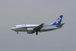 tsubameさんが、福岡空港で撮影したエアーネクスト 737-5Y0の航空フォト(飛行機 写真・画像)