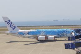 みのフォトグラファさんが、中部国際空港で撮影した全日空 A380-841の航空フォト(飛行機 写真・画像)