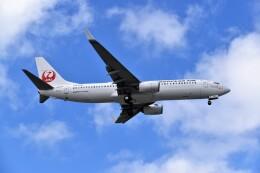 こじゆきさんが、那覇空港で撮影した日本トランスオーシャン航空 737-8Q3の航空フォト(飛行機 写真・画像)