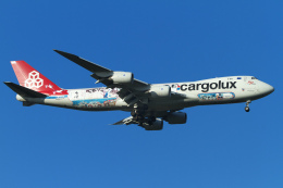nh747dさんが、成田国際空港で撮影したカーゴルクス 747-8R7F/SCDの航空フォト(飛行機 写真・画像)