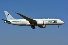 sin747さんが、成田国際空港で撮影したZIPAIR 787-8 Dreamlinerの航空フォト(飛行機 写真・画像)
