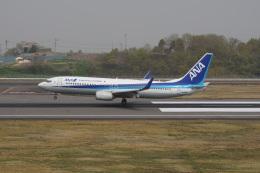 神宮寺ももさんが、高松空港で撮影した全日空 737-881の航空フォト(飛行機 写真・画像)